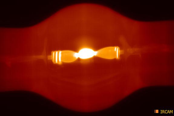 Infrarot-Bild einer Plasmalampe